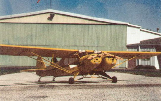 Warner / Piper Twin Cub: Siamese, but not quite twins.