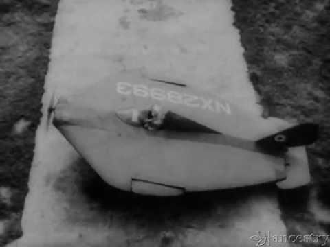 Eshelman Flying Flounder : Flying Critter