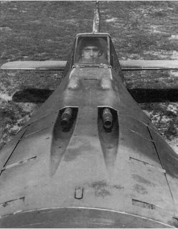 Focke-Wulf Fw 190A-3: Painfully Atractive.