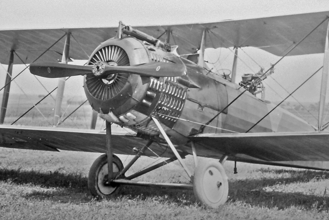 Salmson 2 A2: All in the Family.